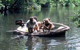 2005 Walker Bay Angler 9